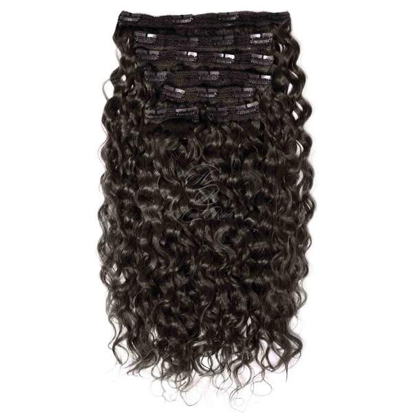 Curly Clip-Ins